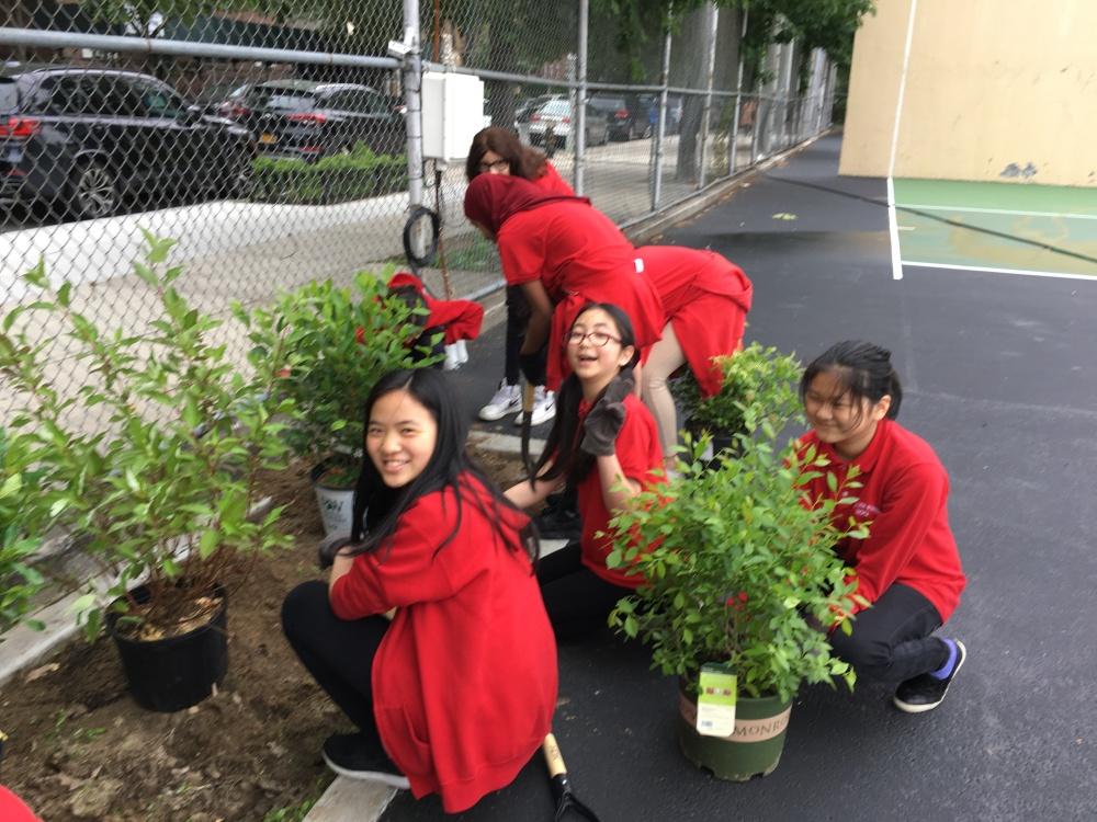 189Q Planting day_MP (3)